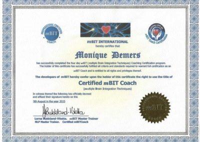 Certificate mBIT Coach 2015